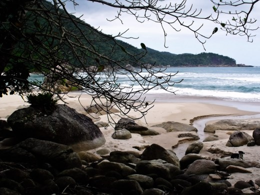 Praia dos Antigos - Paraty